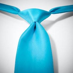 Aqua Pre-Tied Tie