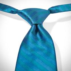 Pacific Pre-Tied Striped Tie