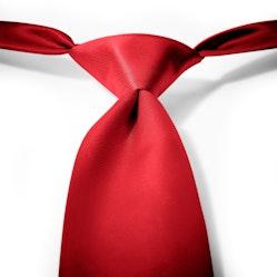 Apple-Chianti Pre-Tied Tie