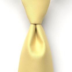 Sunbeam Solid Pre-Tied Tie