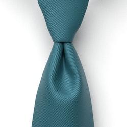 Peacock Solid Pre-Tied Tie