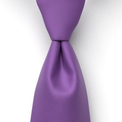 Regency Solid Pre-Tied Tie