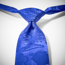 Royal Blue Paisley Pre-Tied Tie