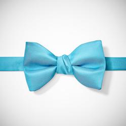 Pre-Tied Aqua Bow Tie