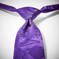 Viola Paisley Pre-Tied Tie
