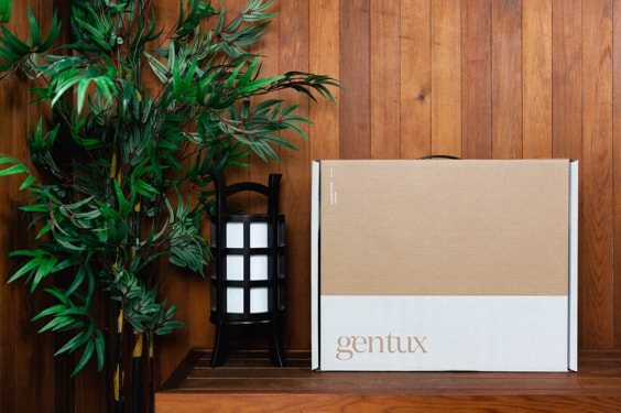 A box that our suits ship in sitting on a table with a fern.