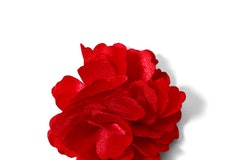 Ruby Valentino Carnation Lapel Pin