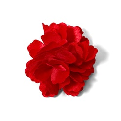 Ruby Carnation Lapel Pin