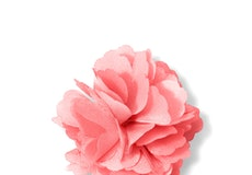Coral Reef Carnation Lapel Pin