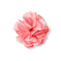 Coral Carnation Lapel Pin