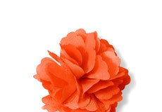 Jalapeno Carnation Lapel Pin
