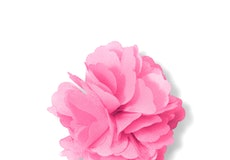 Tickled Carnation Lapel Pin