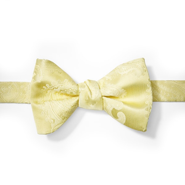 Canary Paisley Pre-Tied Bow Tie