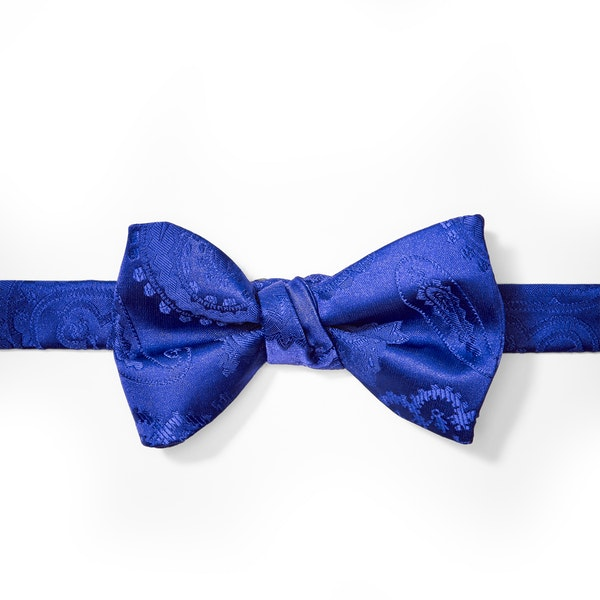 Horizon Paisley Pre-Tied Bow Tie