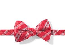 Ruby Valentino Plaid Pre-Tied Bow Tie