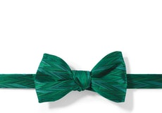 Emerald Zig Zag Pre-Tied Bow Tie