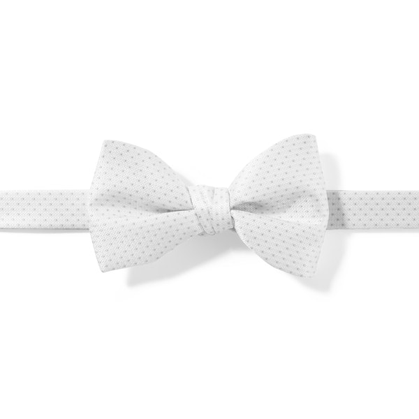 White and Silver Pin Dot Pre-Tied Bow Tie