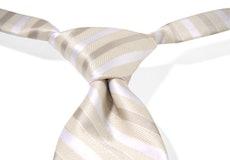 Champagne Striped Pre-Tied Tie