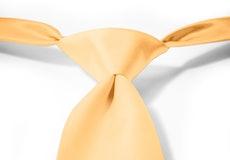Gold Pre-Tied Tie