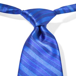 Royal Blue Pre-Tied Striped Tie