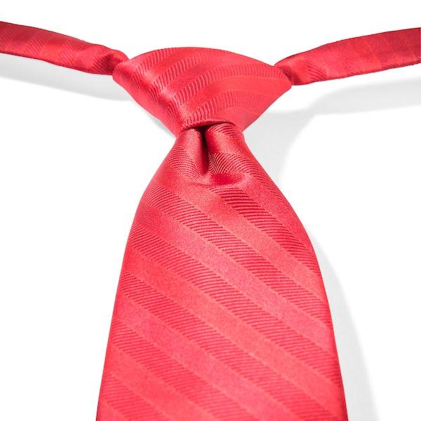 Ruby Valentino Striped Pre-Tied Tie
