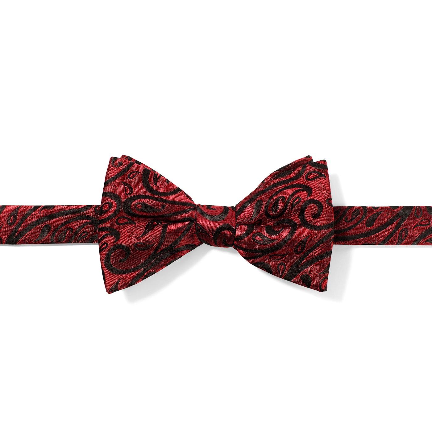 Wine Modern Paisley Pre-Tied Bow Tie