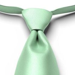 Mint Green Solid Pre-Tied Tie