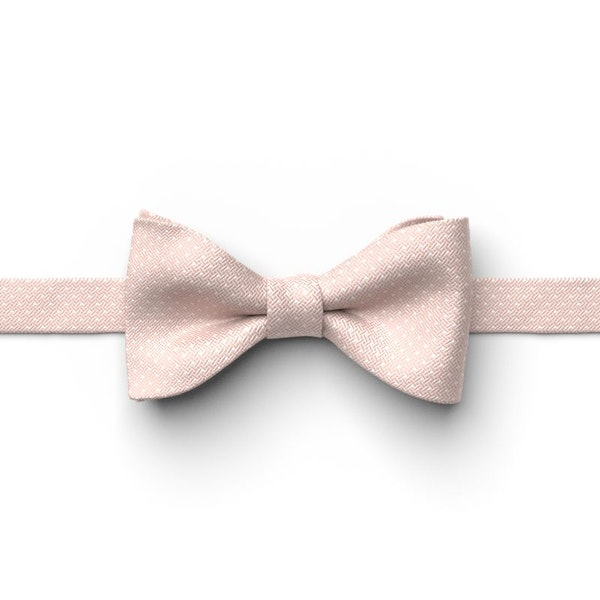 Biscotti Pin Dot Pre-Tied Bow Tie