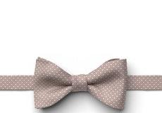 Portobello Pin Dot Pre-Tied Bow Tie