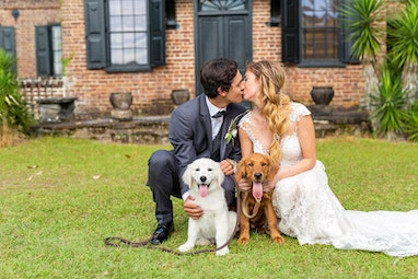 Groom in Grey Tux with Bride and Pet dogs