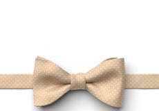 Toffee Pin Dot Pre-Tied Bow Tie