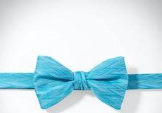 Malibu Zig Zag Pre-Tied Bow Tie