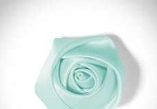Mint Rose Lapel Pin