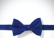 Horizon Zig Zag Pre-Tied Bow Tie