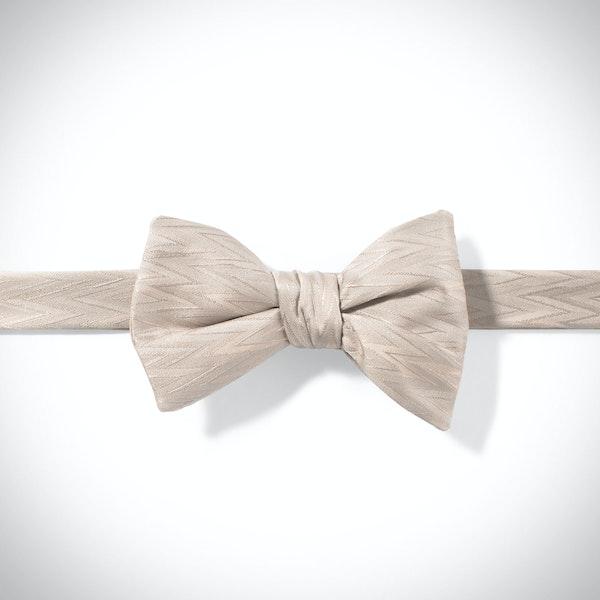 Biscotti Zig Zag Pre-Tied Bow Tie
