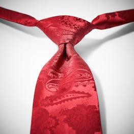Ruby Valentino Paisley Pre-Tied Tie