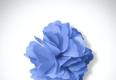 Cornflower Carnation Lapel Pin