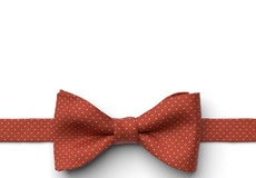 Burnt Orange Pin Dot Pre-Tied Bow Tie