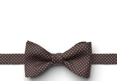 Chocolate Pin Dot Pre-Tied Bow Tie