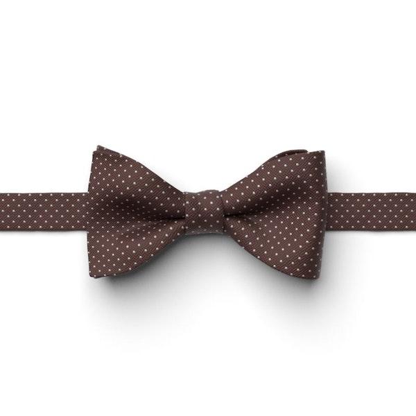 Cocoa Pin Dot Pre-Tied Bow Tie
