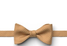 Midas Gold Pin Dot Pre-Tied Bow Tie
