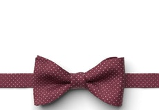 Mulberry Pin Dot Pre-Tied Bow Tie