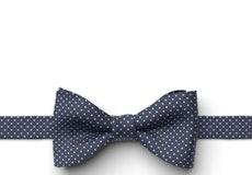Marine Pin Dot Pre-Tied Bow Tie