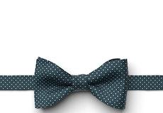 Peacock Pin Dot Pre-Tied Bow Tie