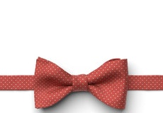 Persimmon Pin Dot Pre-Tied Bow Tie
