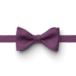 Persian Plum Pin Dot Pre-Tied Bow Tie