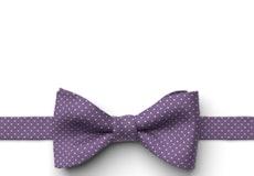 Purple Pin Dot Pre-Tied Bow Tie
