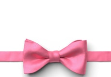 Bubble Gum Pre-Tied Bow Tie