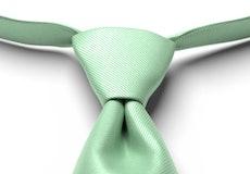 Mint Green Pre-Tied Tie