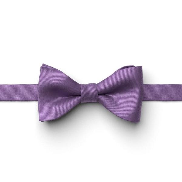 Purple Pre-Tied Bow Tie